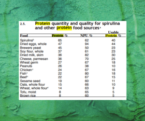 Spirulina and Children - Its A Powerhouse Of Nutrition