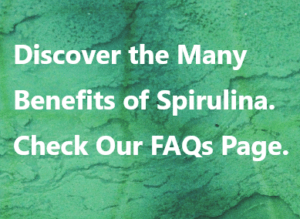 Discover the many benefits of spirulina