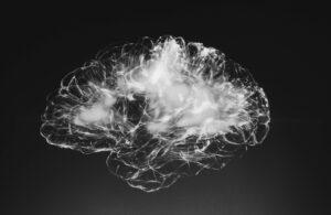 The Brain - (pic alina-grubnyak unsplash)